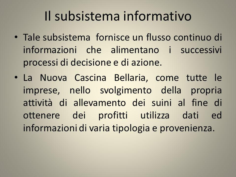 Il subsistema informativo Tale subsistema fornisce un flusso continuo di informazioni che alimentano i successivi processi di decisione e di azione. L