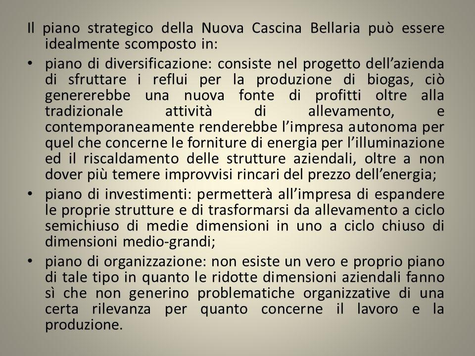 Il piano strategico della Nuova Cascina Bellaria può essere idealmente scomposto in: piano di diversificazione: consiste nel progetto dellazienda di s