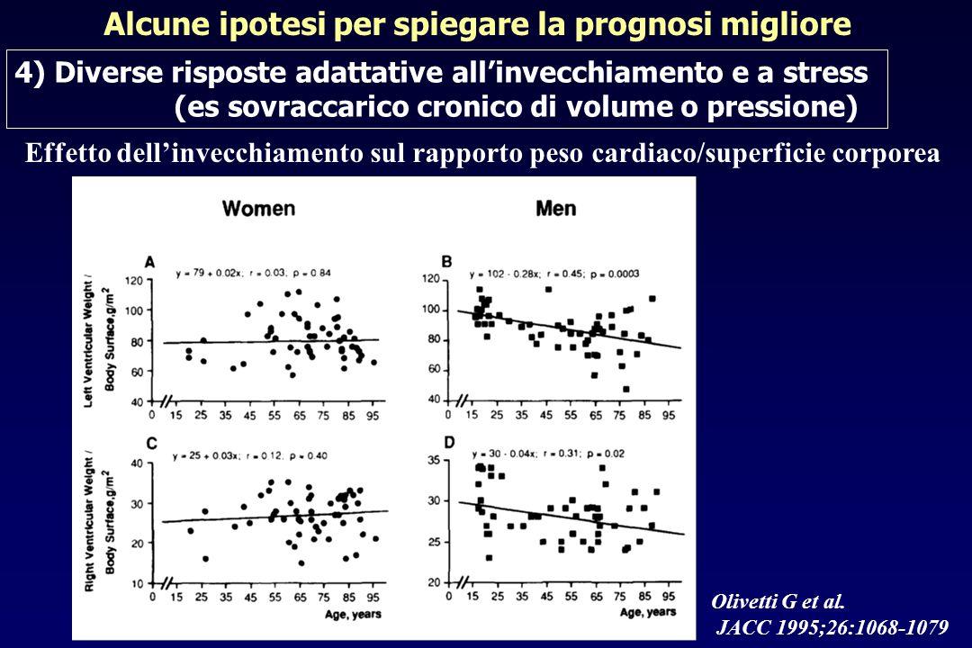 Olivetti G et al. JACC 1995;26:1068-1079 Alcune ipotesi per spiegare la prognosi migliore 4) Diverse risposte adattative allinvecchiamento e a stress
