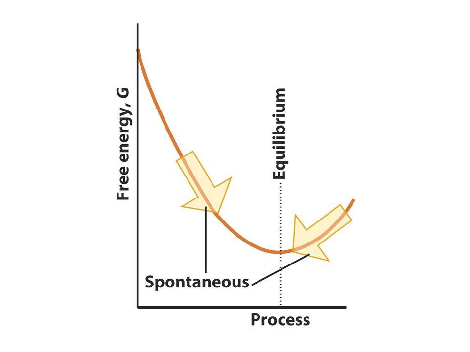 L energia libera G è una funzione di stato che combina l entalpia e l entropia del sistema G = H – TS a T costante : ΔG = ΔH - T ΔS La variazione di energia libera è una misura della spontaneità di una trasformazione ΔH > 0, ΔS 0 ΔH 0 ΔG < 0 T ΔS > ΔH ΔG < 0 ΔH > 0, ΔS > 0 T ΔS 0 T ΔS > ΔH ΔG > 0 ΔH < 0, ΔS < 0 T ΔS < ΔH ΔG < 0 ΔG 0 processo non spontaneo