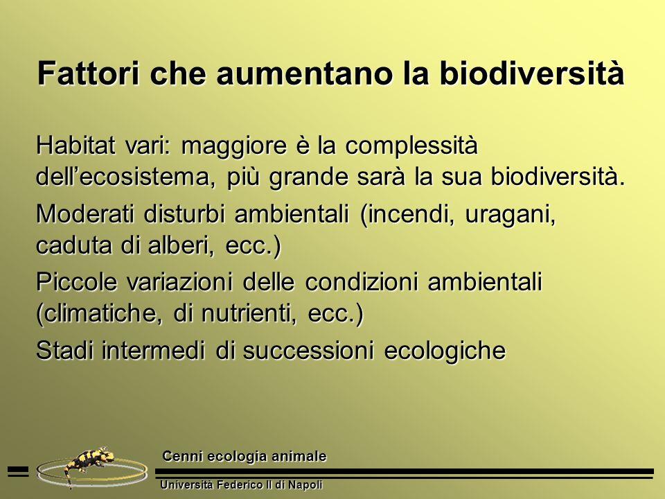 Università Federico II di Napoli Cenni ecologia animale Fattori che aumentano la biodiversità Habitat vari: maggiore è la complessità dellecosistema,