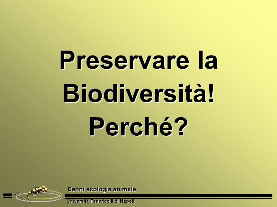 Università Federico II di Napoli Cenni ecologia animale Preservare la Biodiversità! Perché?