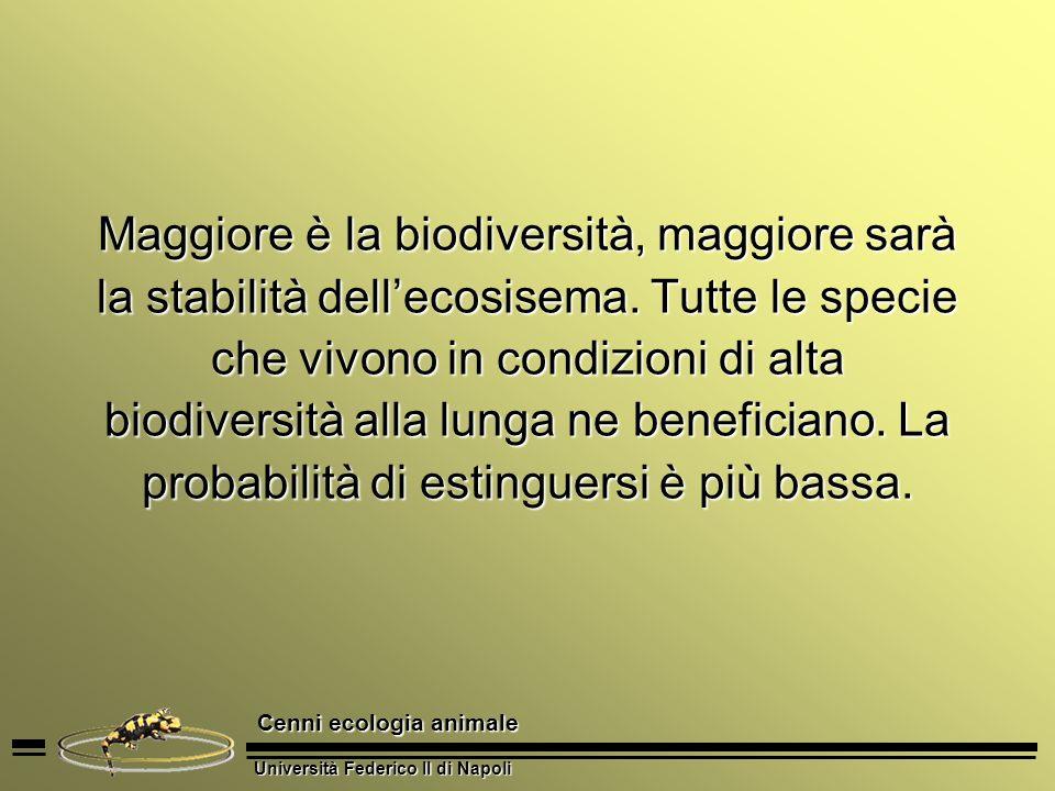 Università Federico II di Napoli Cenni ecologia animale Maggiore è la biodiversità, maggiore sarà la stabilità dellecosisema. Tutte le specie che vivo