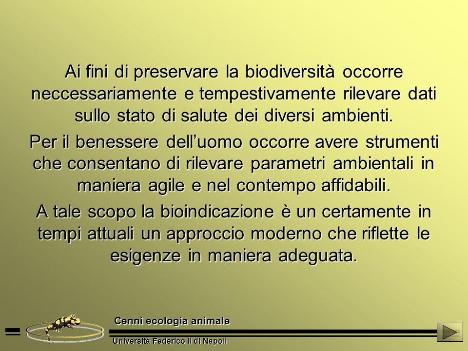 Università Federico II di Napoli Cenni ecologia animale Ai fini di preservare la biodiversità occorre neccessariamente e tempestivamente rilevare dati