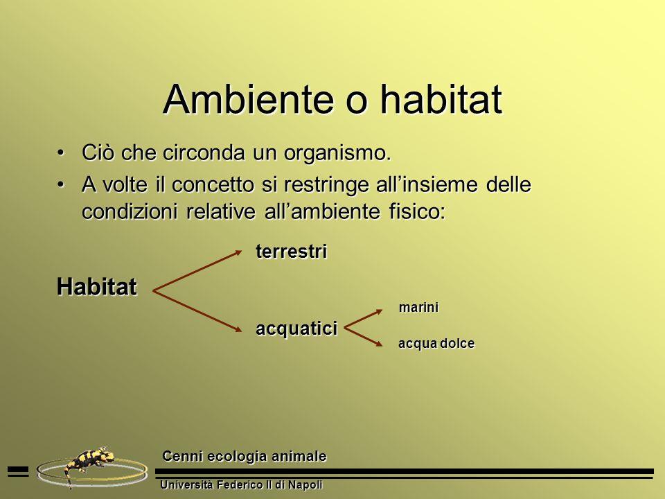 Università Federico II di Napoli Cenni ecologia animale Ambiente o habitat Ciò che circonda un organismo.Ciò che circonda un organismo. A volte il con