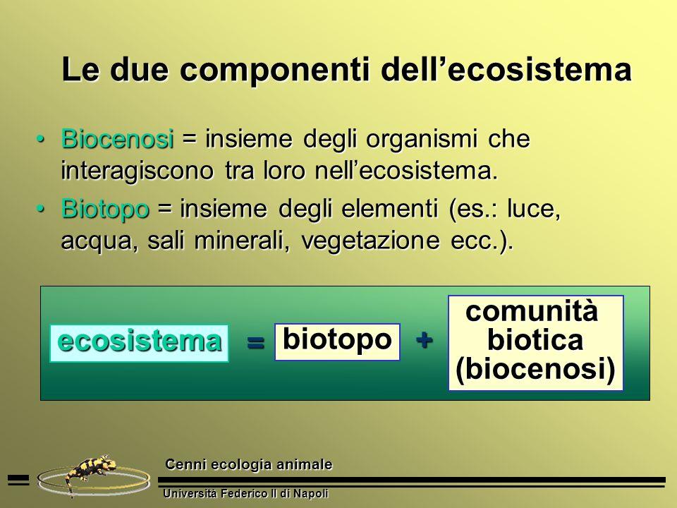 Università Federico II di Napoli Cenni ecologia animale Le due componenti dellecosistema Biocenosi = insieme degli organismi che interagiscono tra lor