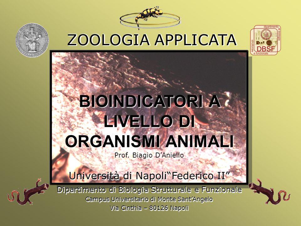 Università Federico II di Napoli Introduzione bioindicatori animali BIOINDICATORI A LIVELLO DI ORGANISMI ANIMALI Prof. Biagio DAniello Università di N