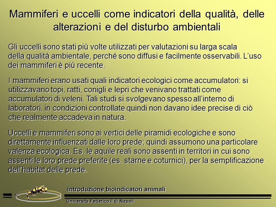 Università Federico II di Napoli Introduzione bioindicatori animali Mammiferi e uccelli come indicatori della qualità, delle alterazioni e del disturb