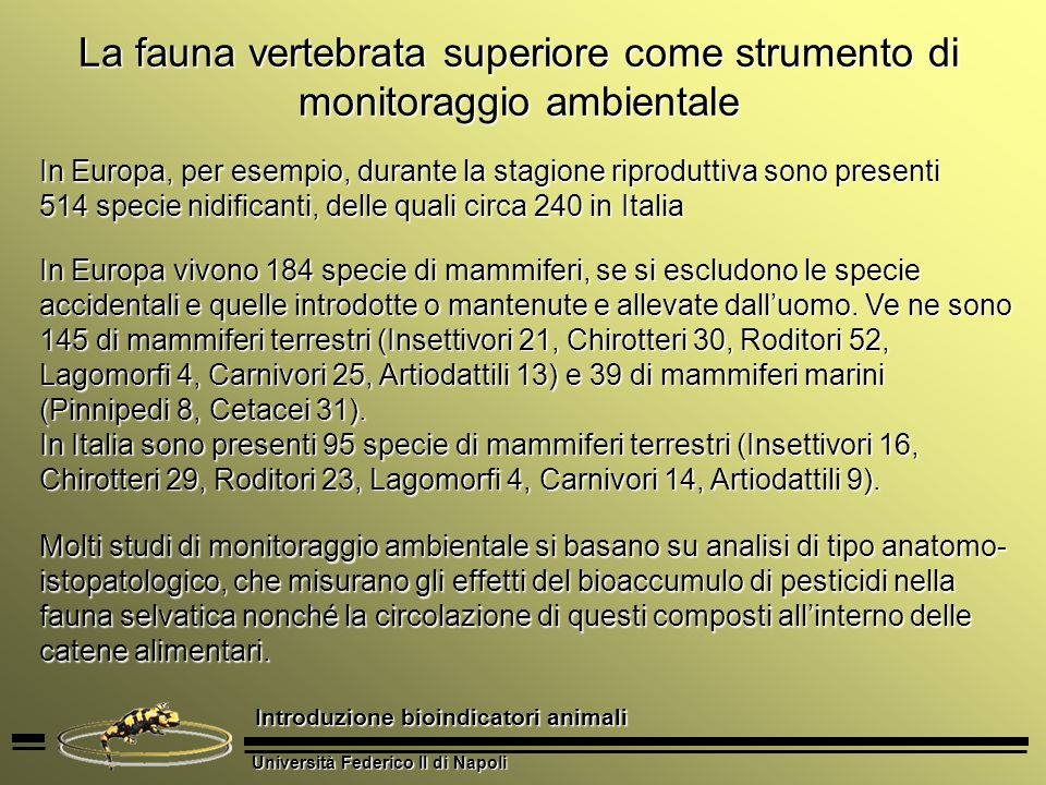 Università Federico II di Napoli Introduzione bioindicatori animali La fauna vertebrata superiore come strumento di monitoraggio ambientale In Europa,