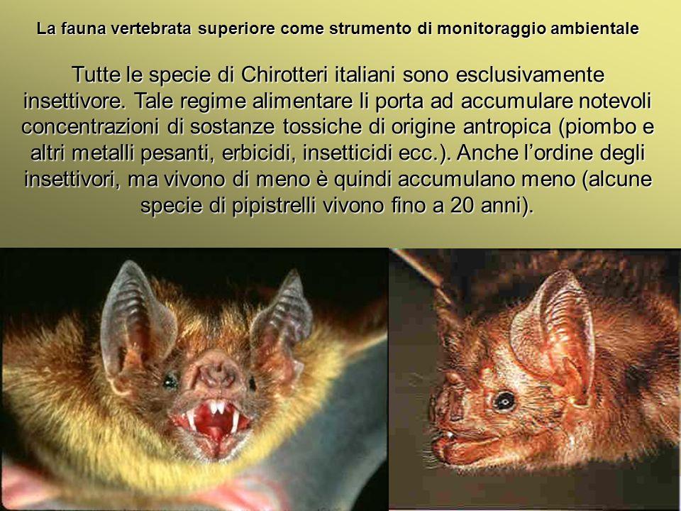 Università Federico II di Napoli Introduzione bioindicatori animali La fauna vertebrata superiore come strumento di monitoraggio ambientale Tutte le s