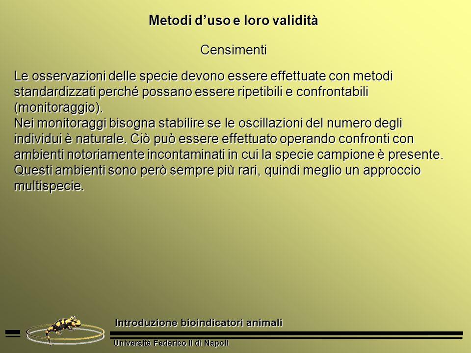 Università Federico II di Napoli Introduzione bioindicatori animali Metodi duso e loro validità Censimenti Le osservazioni delle specie devono essere