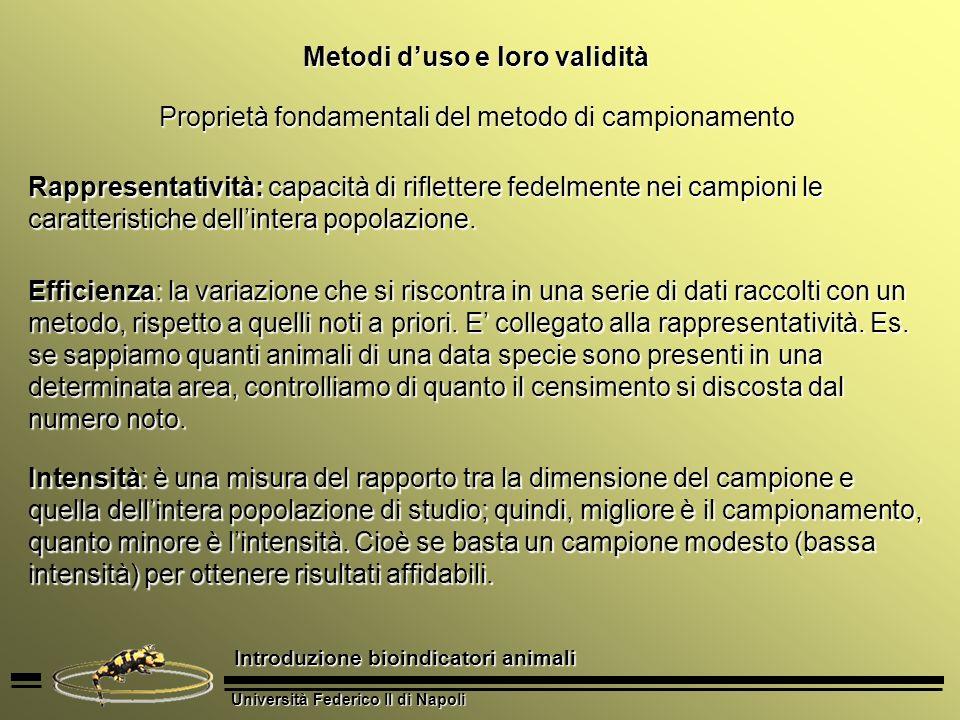 Università Federico II di Napoli Introduzione bioindicatori animali Metodi duso e loro validità Proprietà fondamentali del metodo di campionamento Rap