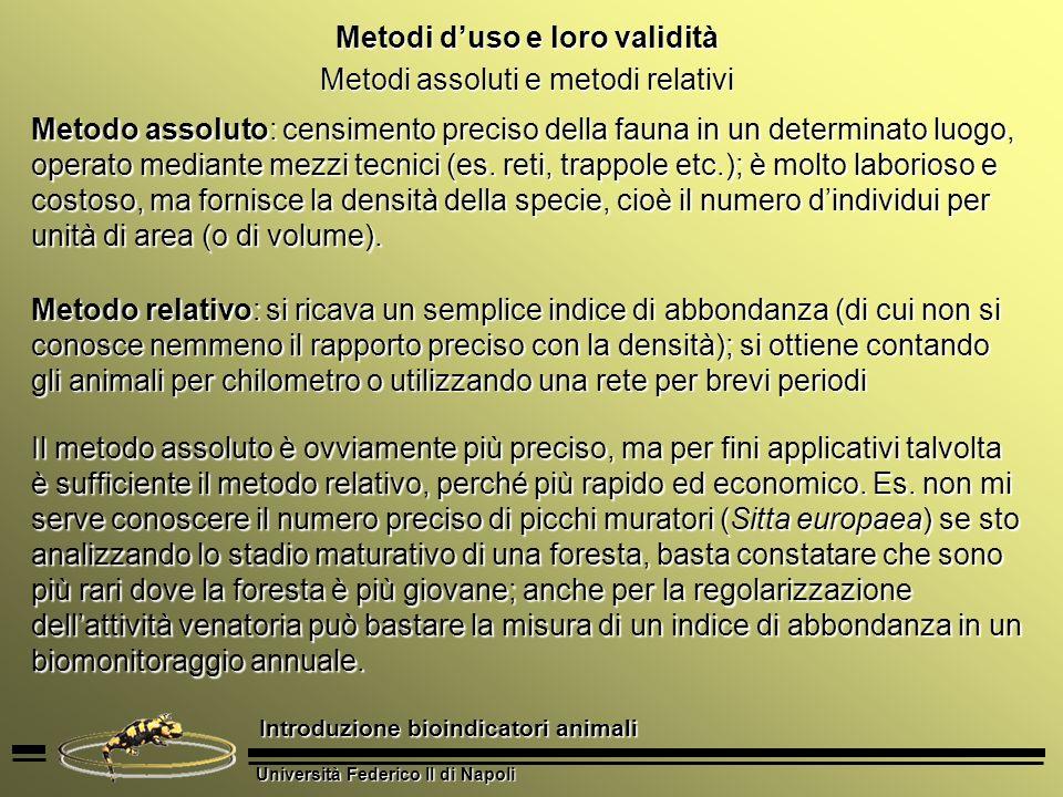 Università Federico II di Napoli Introduzione bioindicatori animali Metodi duso e loro validità Metodi assoluti e metodi relativi Metodo assoluto: cen