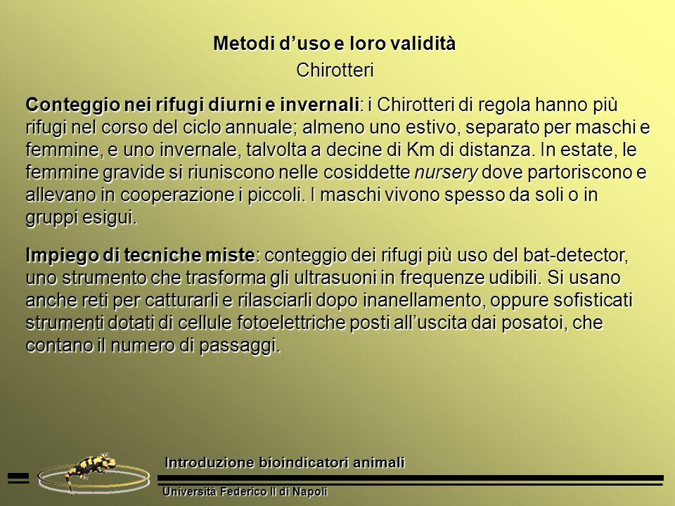 Università Federico II di Napoli Introduzione bioindicatori animali Metodi duso e loro validità Chirotteri Conteggio nei rifugi diurni e invernali: i