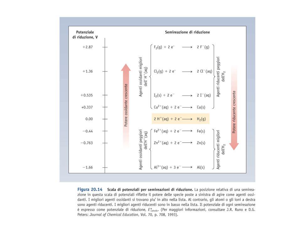 Potenziali standard il potenziale E di un elettrodo dipende dalle concentrazioni il potenziale standard E 0 si ha quando reagenti e prodotti sono allo stato di riferimento (a = 1, solidi o liquidi o c =1M o P = 1 atm) 2 Ag + (aq) + Fe (s) 2 Ag (s) + Fe 2+ (aq) E 0 = E 0 (Ag + /Ag) - E 0 (Fe 2+ /Fe)