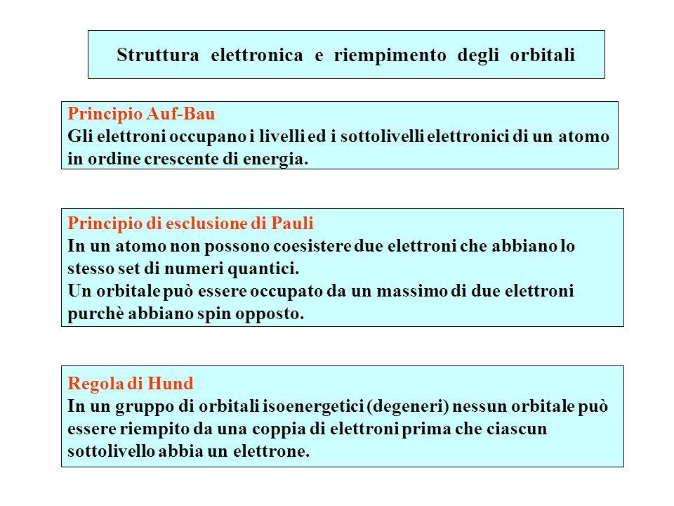 Struttura elettronica e riempimento degli orbitali Principio Auf-Bau Gli elettroni occupano i livelli ed i sottolivelli elettronici di un atomo in ord