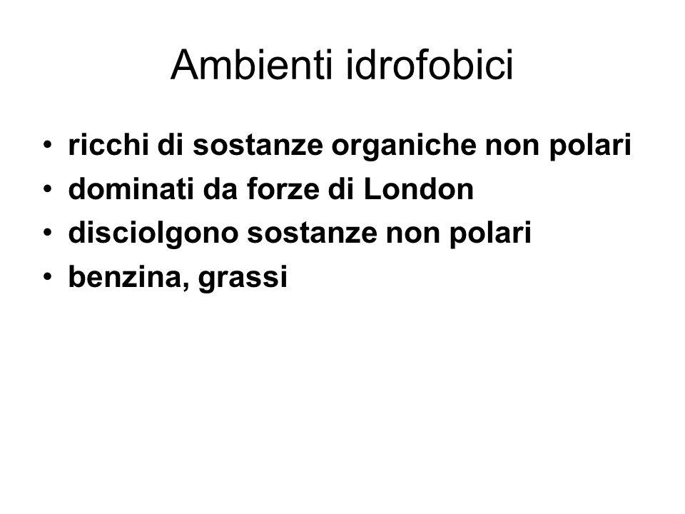 Ambienti idrofobici ricchi di sostanze organiche non polari dominati da forze di London disciolgono sostanze non polari benzina, grassi