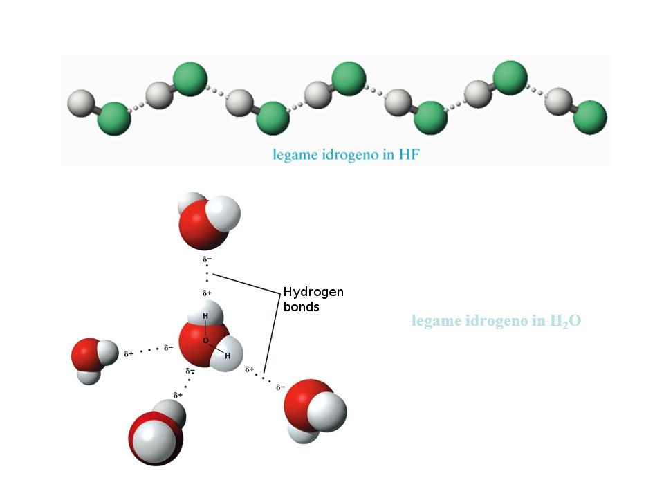 legame idrogeno in H 2 O