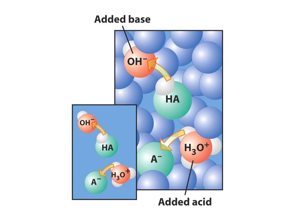 Soluzione tampone Si oppone ai cambiamenti di pH quando si aggiungono ioni H 3 O + o OH -.