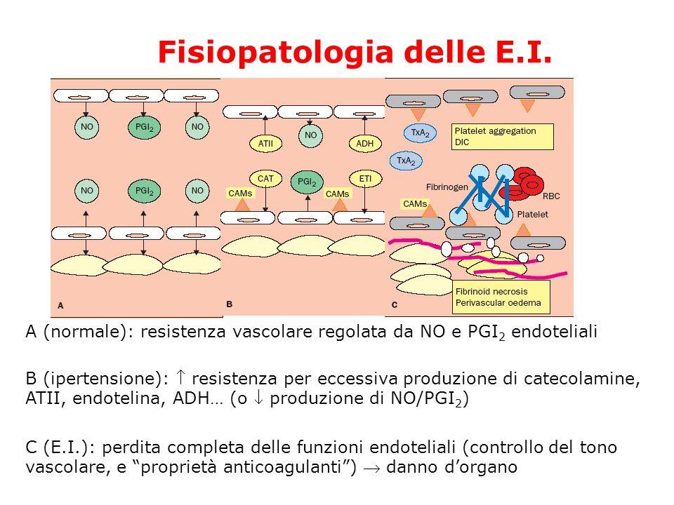 Fisiopatologia delle E.I. A (normale): resistenza vascolare regolata da NO e PGI 2 endoteliali B (ipertensione): resistenza per eccessiva produzione d