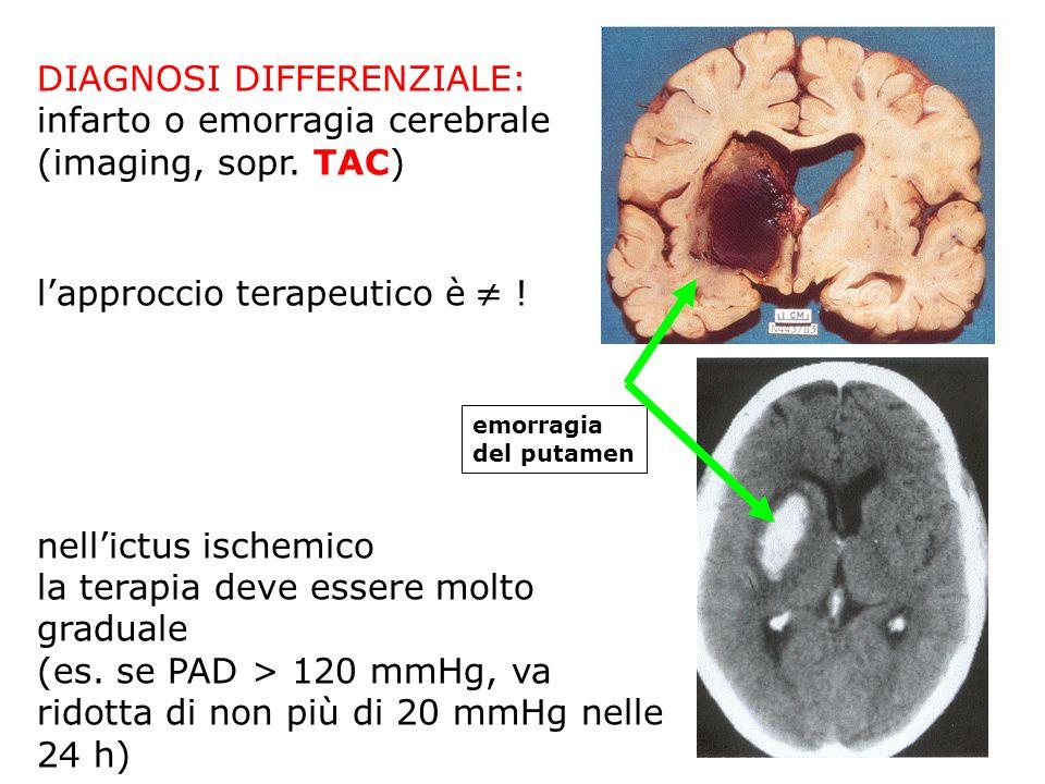 DIAGNOSI DIFFERENZIALE: infarto o emorragia cerebrale (imaging, sopr. TAC) lapproccio terapeutico è ! nellictus ischemico la terapia deve essere molto