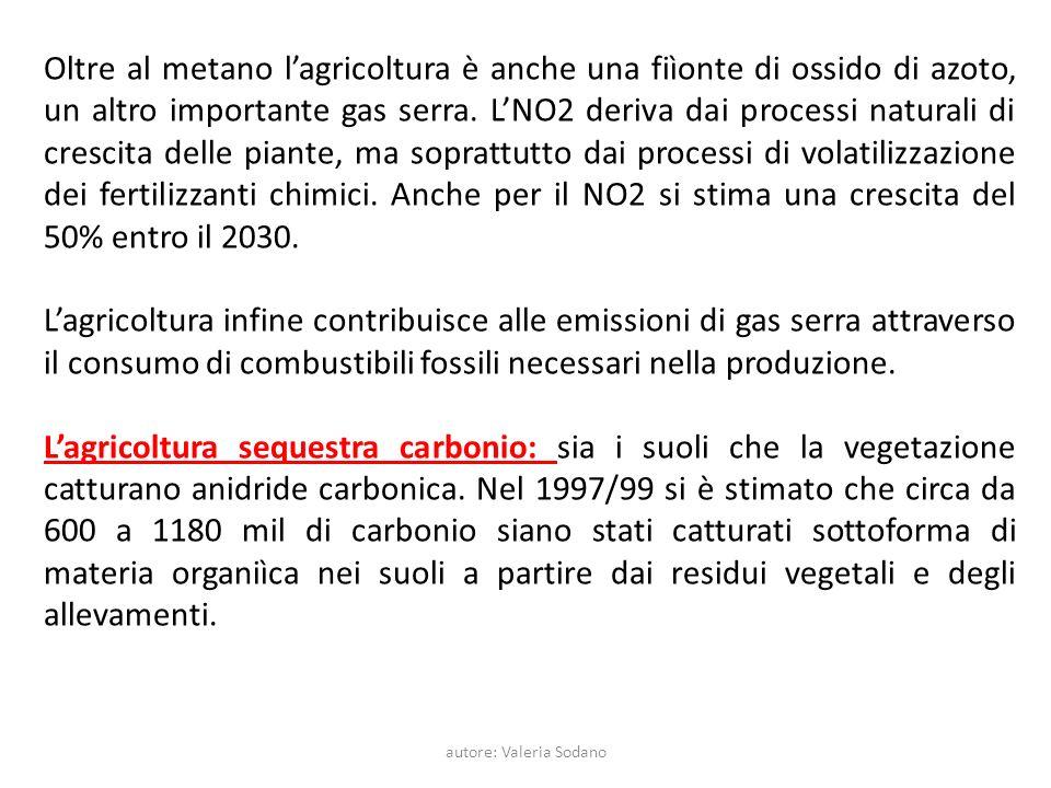 autore: Valeria Sodano Oltre al metano lagricoltura è anche una fiìonte di ossido di azoto, un altro importante gas serra.