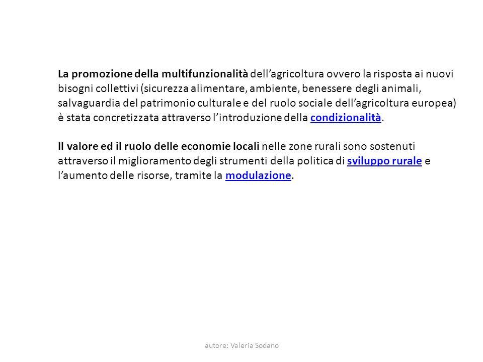 autore: Valeria Sodano La promozione della multifunzionalità dellagricoltura ovvero la risposta ai nuovi bisogni collettivi (sicurezza alimentare, amb