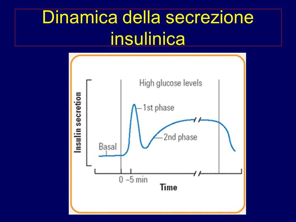 Dinamica della secrezione insulinica