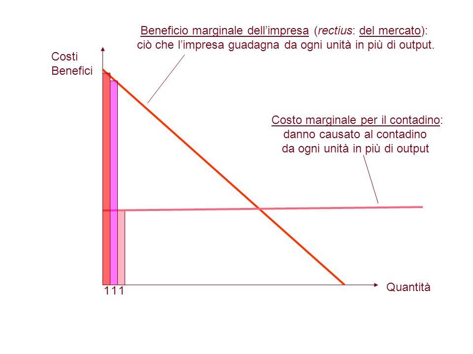 Beneficio marginale dellimpresa (rectius: del mercato): ciò che limpresa guadagna da ogni unità in più di output. Costo marginale per il contadino: da