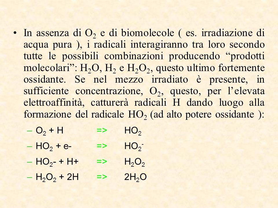 In assenza di O 2 e di biomolecole ( es.