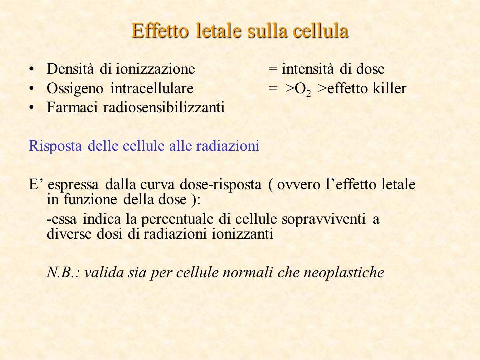 Effetto letale sulla cellula Densità di ionizzazione= intensità di dose Ossigeno intracellulare= >O 2 >effetto killer Farmaci radiosensibilizzanti Risposta delle cellule alle radiazioni E espressa dalla curva dose-risposta ( ovvero leffetto letale in funzione della dose ): -essa indica la percentuale di cellule sopravviventi a diverse dosi di radiazioni ionizzanti N.B.: valida sia per cellule normali che neoplastiche