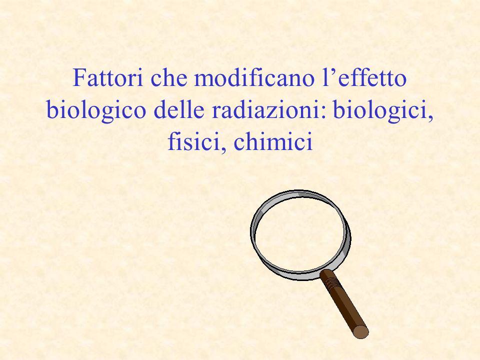 Fattori che modificano leffetto biologico delle radiazioni: biologici, fisici, chimici