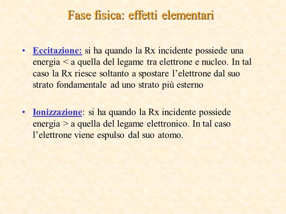 Fase fisica: effetti elementari Eccitazione: si ha quando la Rx incidente possiede una energia < a quella del legame tra elettrone e nucleo.