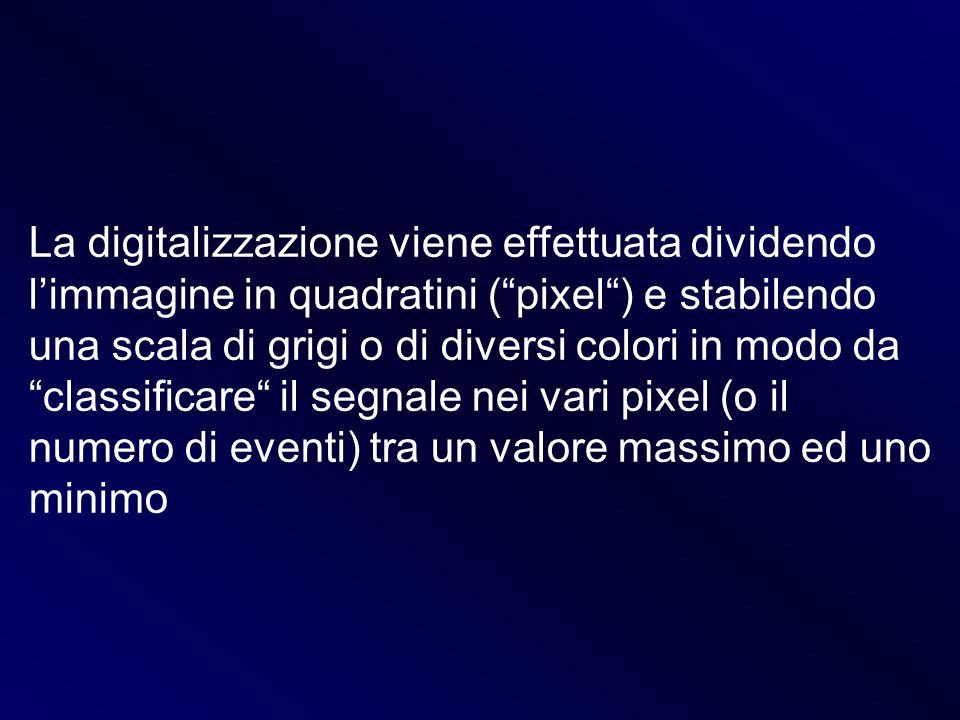 La digitalizzazione viene effettuata dividendo limmagine in quadratini (pixel) e stabilendo una scala di grigi o di diversi colori in modo da classifi