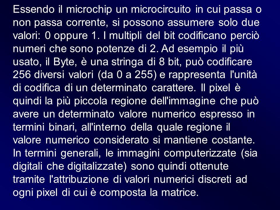 Essendo il microchip un microcircuito in cui passa o non passa corrente, si possono assumere solo due valori: 0 oppure 1. I multipli del bit codifican