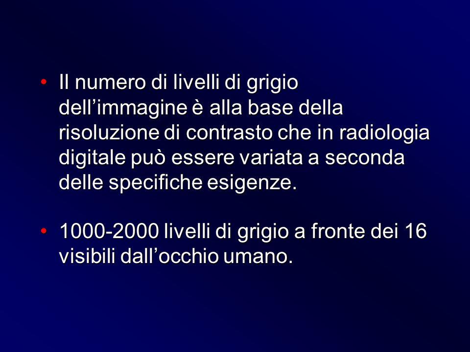 Il numero di livelli di grigio dellimmagine è alla base della risoluzione di contrasto che in radiologia digitale può essere variata a seconda delle s
