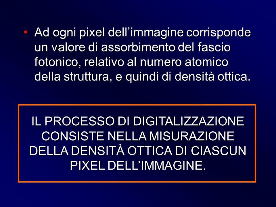 Ad ogni pixel dellimmagine corrisponde un valore di assorbimento del fascio fotonico, relativo al numero atomico della struttura, e quindi di densità