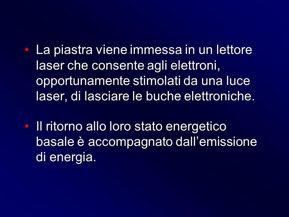 La piastra viene immessa in un lettore laser che consente agli elettroni, opportunamente stimolati da una luce laser, di lasciare le buche elettronich