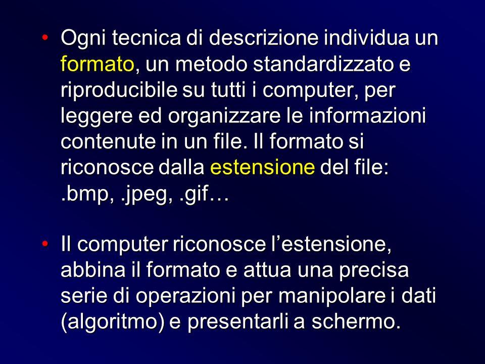 Ogni tecnica di descrizione individua un formato, un metodo standardizzato e riproducibile su tutti i computer, per leggere ed organizzare le informaz