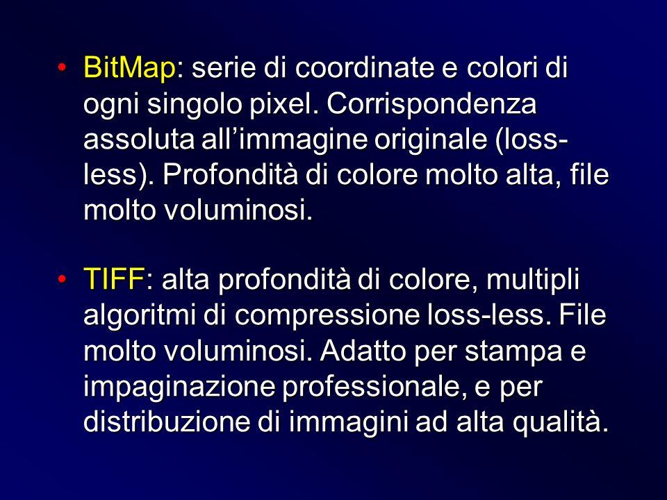 BitMap: serie di coordinate e colori di ogni singolo pixel. Corrispondenza assoluta allimmagine originale (loss- less). Profondità di colore molto alt