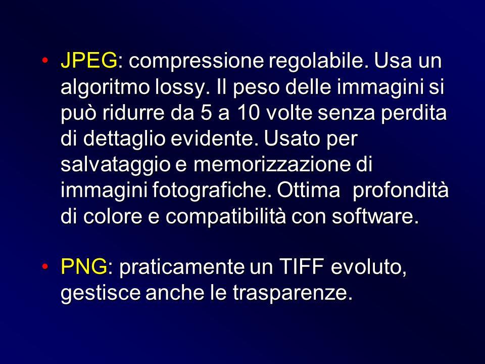 JPEG: compressione regolabile. Usa un algoritmo lossy. Il peso delle immagini si può ridurre da 5 a 10 volte senza perdita di dettaglio evidente. Usat