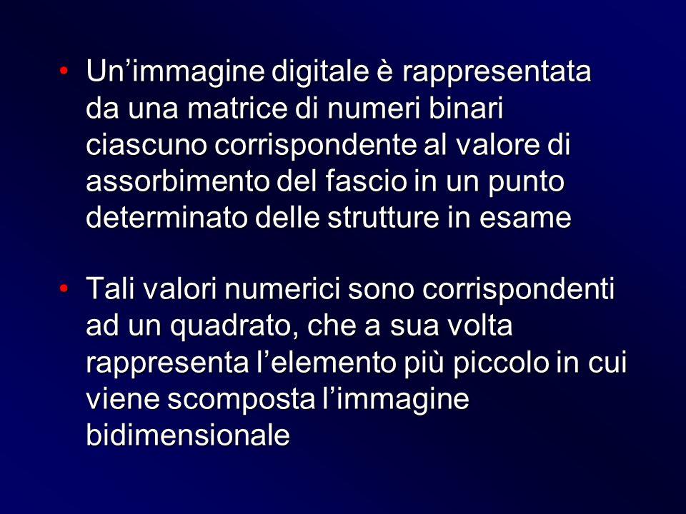 Unimmagine digitale è rappresentata da una matrice di numeri binari ciascuno corrispondente al valore di assorbimento del fascio in un punto determina