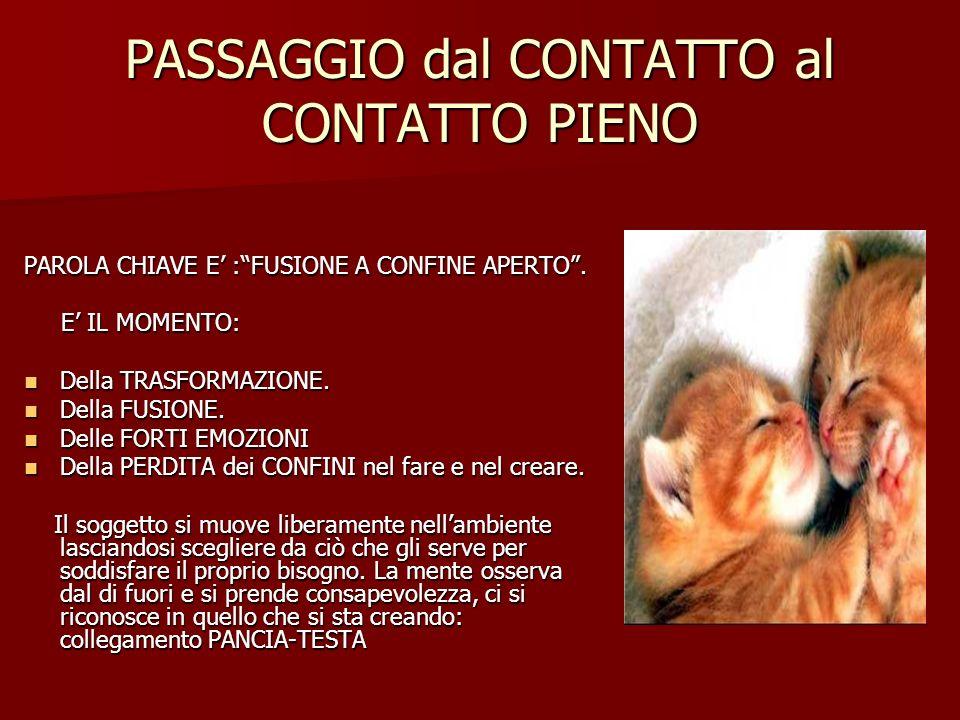 PASSAGGIO dal CONTATTO al CONTATTO PIENO PAROLA CHIAVE E :FUSIONE A CONFINE APERTO.