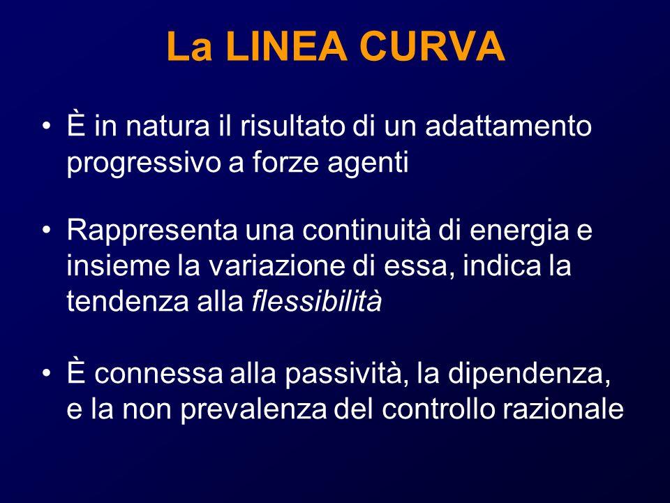 La LINEA CURVA È in natura il risultato di un adattamento progressivo a forze agenti Rappresenta una continuità di energia e insieme la variazione di