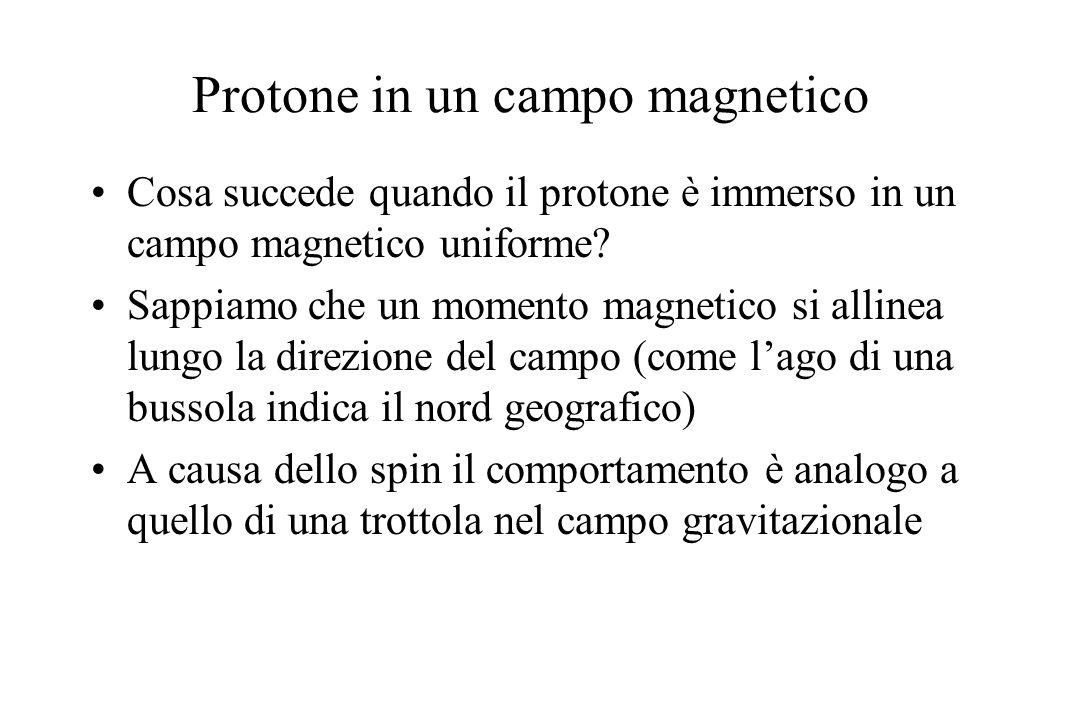 Protone in un campo magnetico Cosa succede quando il protone è immerso in un campo magnetico uniforme? Sappiamo che un momento magnetico si allinea lu