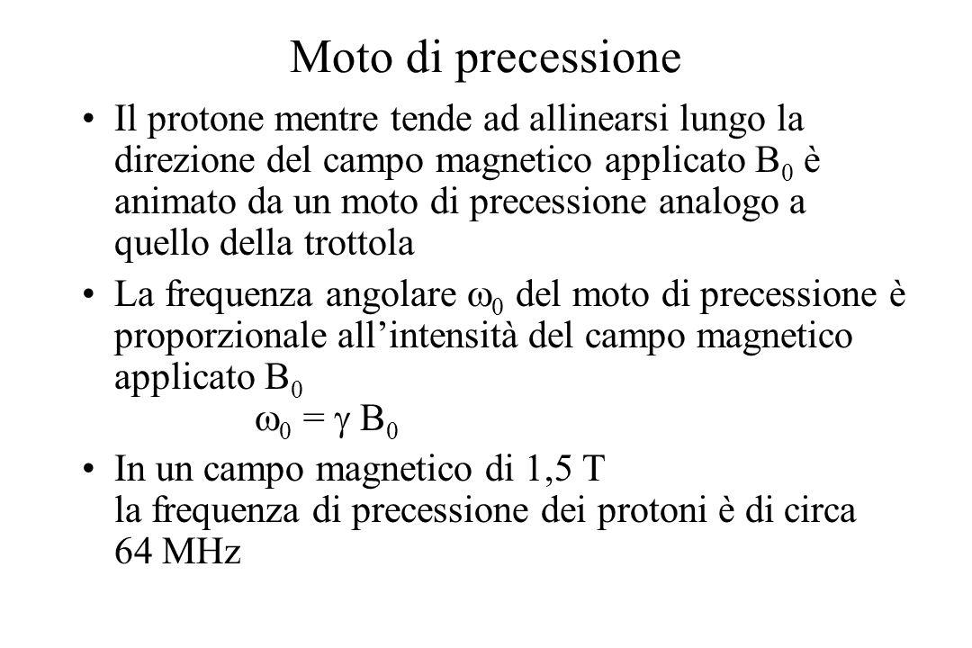 Moto di precessione Il protone mentre tende ad allinearsi lungo la direzione del campo magnetico applicato B 0 è animato da un moto di precessione ana