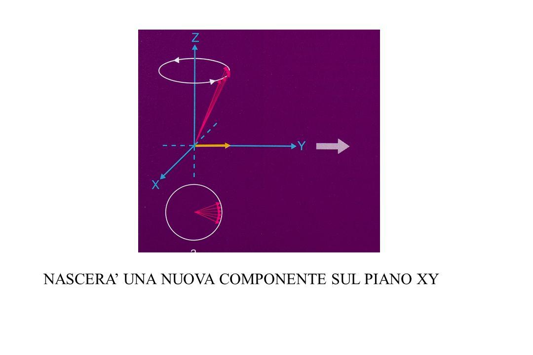 NASCERA UNA NUOVA COMPONENTE SUL PIANO XY