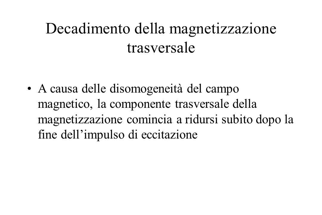 Decadimento della magnetizzazione trasversale A causa delle disomogeneità del campo magnetico, la componente trasversale della magnetizzazione cominci