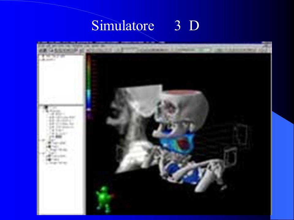 Simulatore 3 D