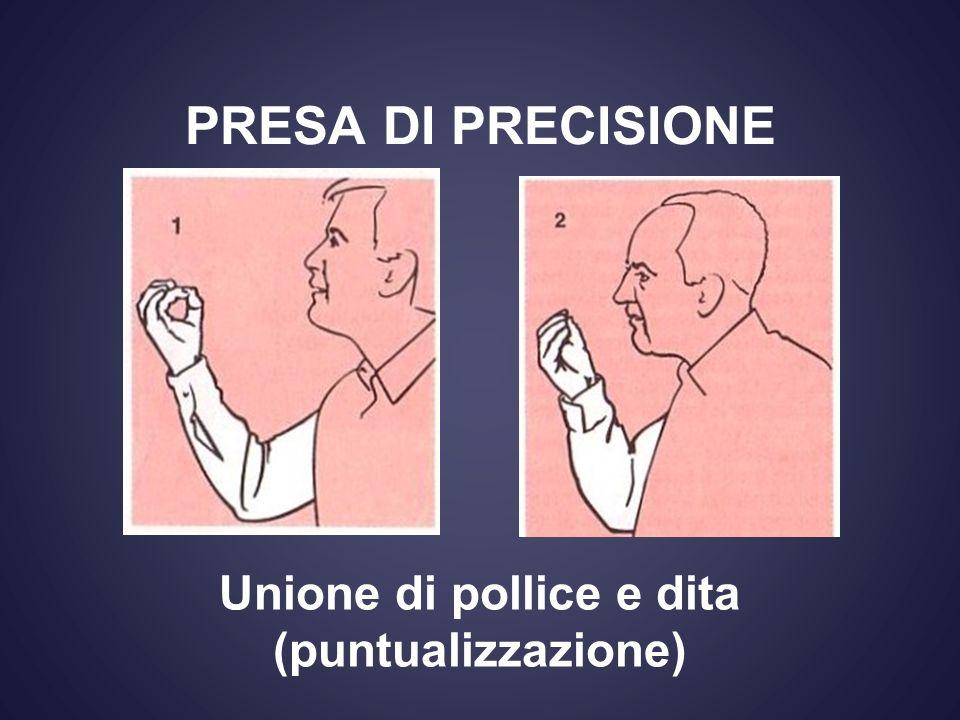PRESA DI PRECISIONE Unione di pollice e dita (puntualizzazione)